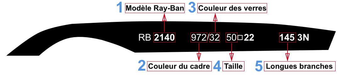 Ray-Ban Branches