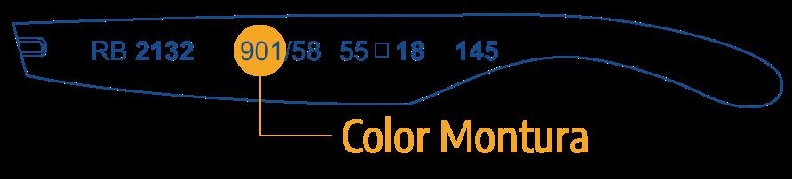 Identifica Color Montura Ray Ban